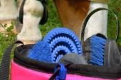 Equestrian Bag Tag